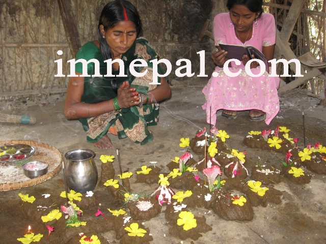 Picture, Image, Photo of Hindu Culture -Worshiping Cowdung (10)
