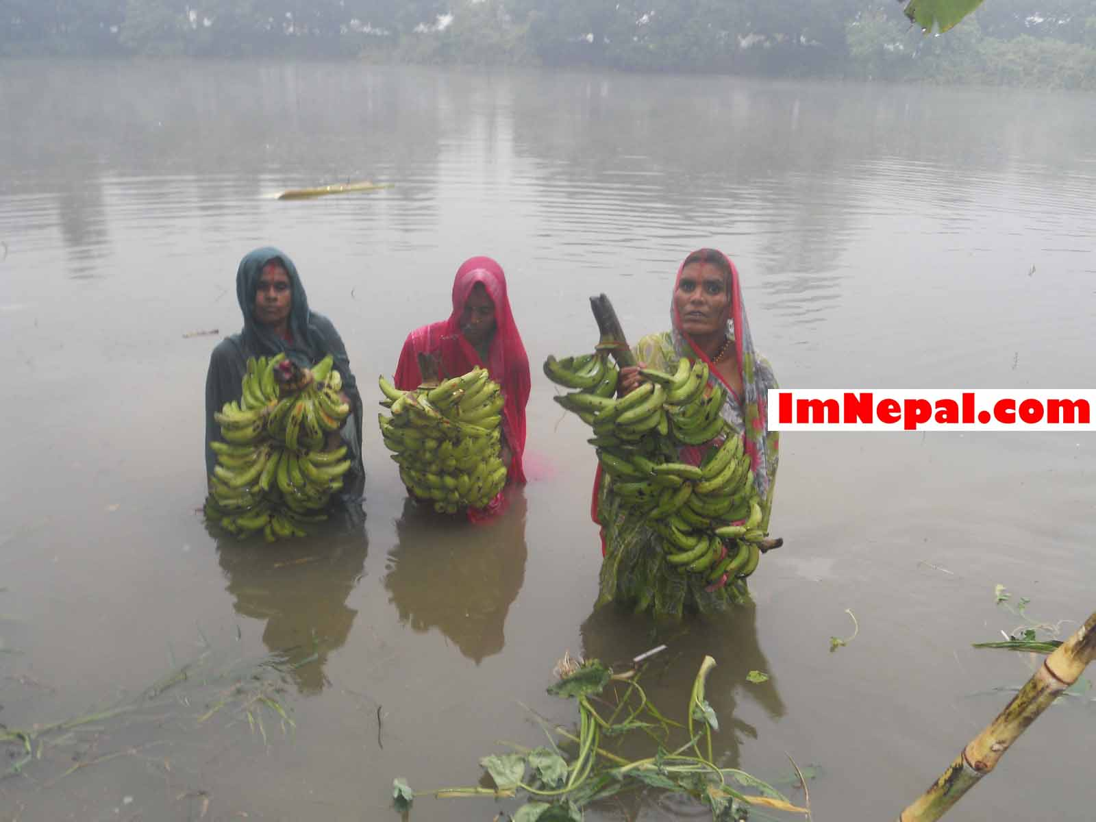 Chhath Puja. Some devotees are bathing in Ganga River....